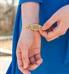 Hydrangea Medical ID Bracelet